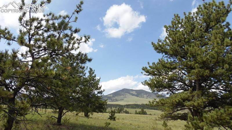571 Old Kathleen Trail - Photo 1