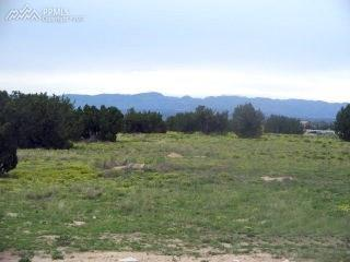 1438 Top Notch Trail, Penrose, CO 81240 (#5124506) :: Colorado Home Finder Realty
