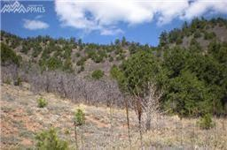 0 Big Spruce Heights, Colorado Springs, CO 80926 (#5286992) :: 8z Real Estate