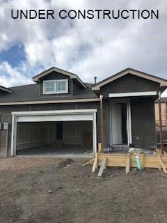 5842 Morning Light Terrace, Colorado Springs, CO 80919 (#5287045) :: 8z Real Estate