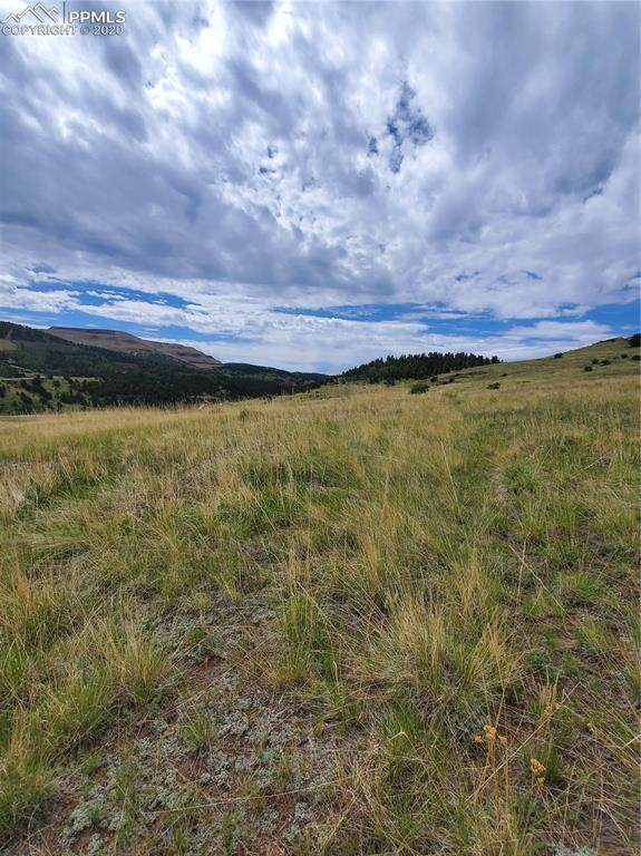 Womack Avenue, Cripple Creek, CO 80813 (#5327704) :: 8z Real Estate