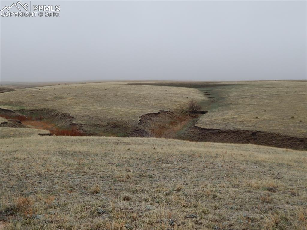 24500- P3 County Road 37 - Photo 1