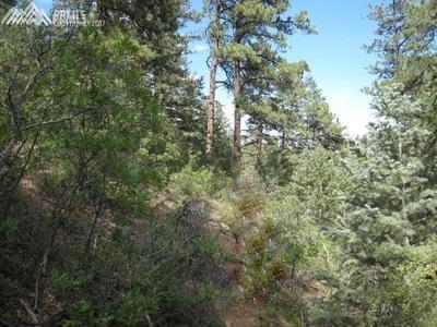 1514 Gardiner Rock Lane, Colorado Springs, CO 80906 (#5726970) :: 8z Real Estate