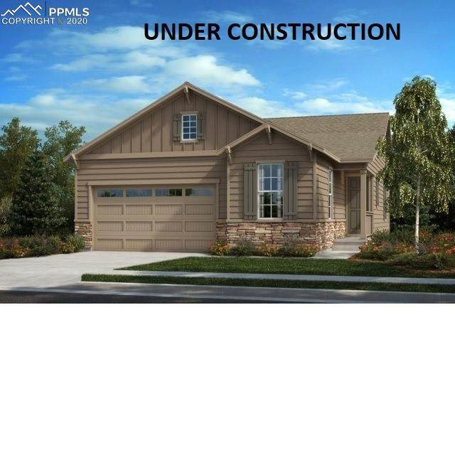 1674 Stable View Drive, Castle Pines, CO 80108 (#5738717) :: The Daniels Team