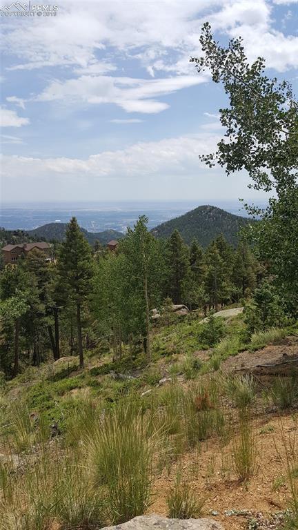 217 Derby Rock Loop, Manitou Springs, CO 80829 (#5743818) :: 8z Real Estate