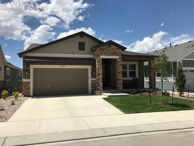 11523 Spectacular Bid Circle, Colorado Springs, CO 80921 (#5800640) :: 8z Real Estate