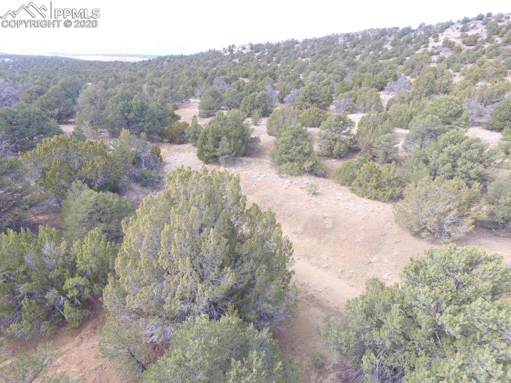 LOT 111 River Ridge Ranch - Photo 1