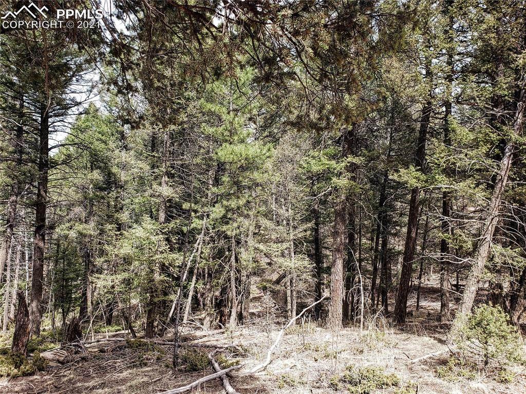 1897 Mountain Estates Road - Photo 1