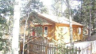 331 Donzi Trail, Florissant, CO 80816 (#5906808) :: The Treasure Davis Team
