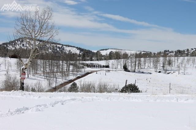 3243 County 86 Road, Victor, CO 80860 (#5927439) :: 8z Real Estate