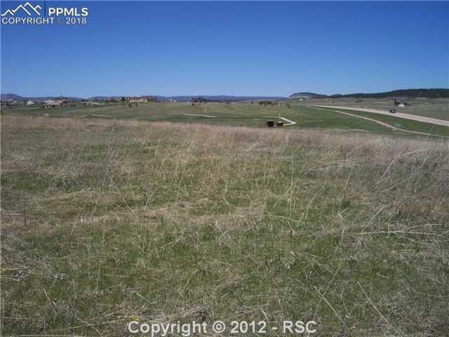 20408 Royal Troon Drive, Monument, CO 80132 (#5934875) :: Jason Daniels & Associates at RE/MAX Millennium