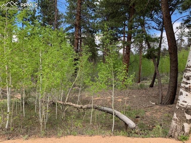 250 Brooks Lane, Sedalia, CO 80135 (#5991865) :: Compass Colorado Realty