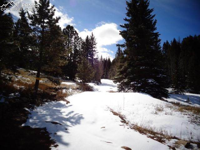 TBD Anges Drive, Cripple Creek, CO 80813 (#6079873) :: The Treasure Davis Team