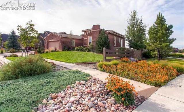 4901 Rainbow Gulch Trail, Colorado Springs, CO 80924 (#6083995) :: Jason Daniels & Associates at RE/MAX Millennium