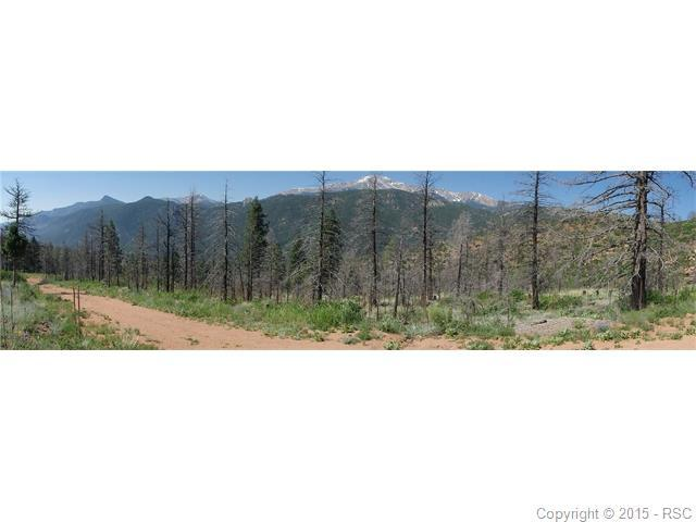 4201 Pyramid Mountain Road, Cascade, CO 80809 (#6108488) :: 8z Real Estate