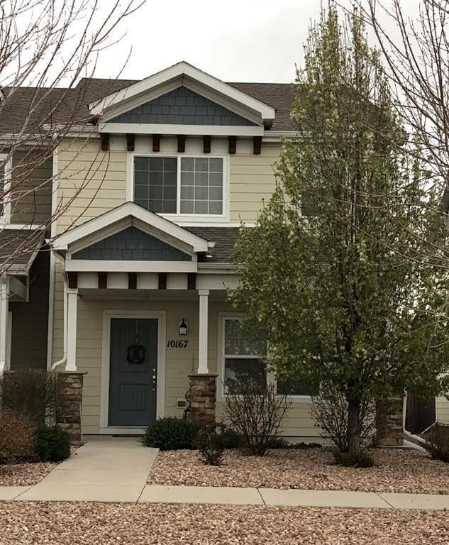 10167 Roughshod Point, Colorado Springs, CO 80925 (#6137894) :: 8z Real Estate