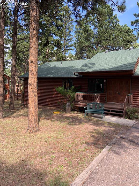 769 Log Haven Drive, Woodland Park, CO 80863 (#6184399) :: The Daniels Team