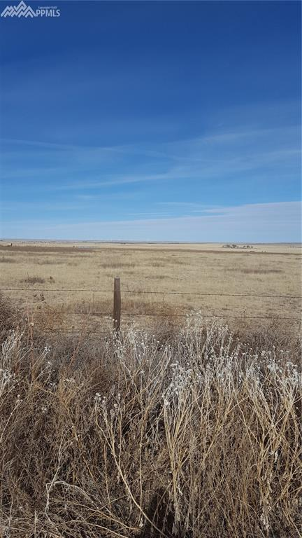 Torrence Road, Yoder, CO 80864 (#6204029) :: The Peak Properties Group
