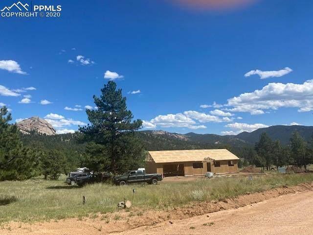 874 Hackamore Drive, Florissant, CO 80816 (#6249324) :: Colorado Home Finder Realty