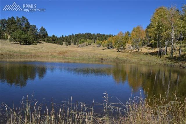 TBD Teller 1 Road, Cripple Creek, CO 80813 (#6296034) :: 8z Real Estate