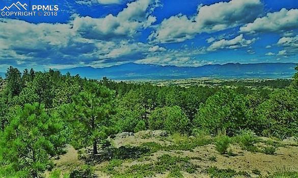 12925 Morris Trail, Colorado Springs, CO 80908 (#6347016) :: The Peak Properties Group