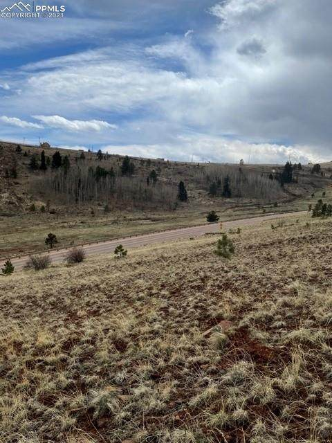 2117 County Road 1 Road, Cripple Creek, CO 80813 (#6358413) :: Fisk Team, RE/MAX Properties, Inc.