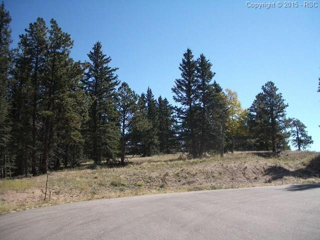 405 Silvermoon Heights, Divide, CO 80814 (#6425285) :: 8z Real Estate