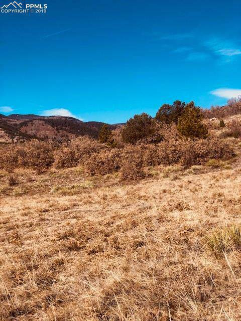 80 Elk Run, Canon City, CO 81212 (#6431469) :: Action Team Realty