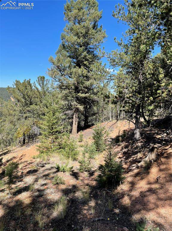 803 Calcite Drive, Divide, CO 80814 (#6455595) :: Tommy Daly Home Team