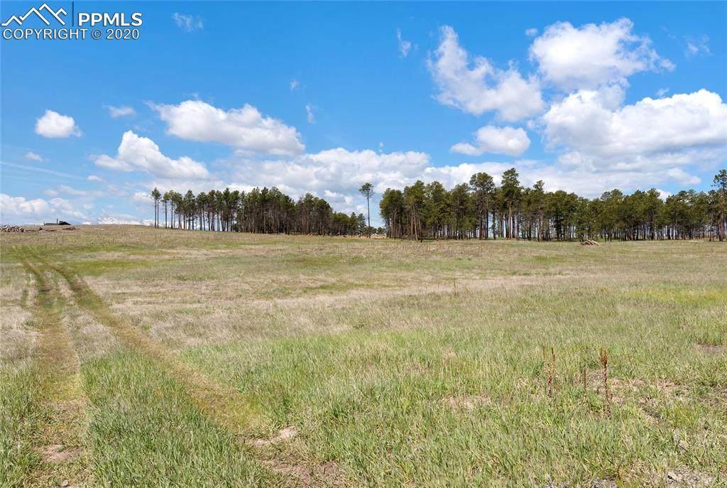 8782 Sanctuary Pine Drive - Photo 1