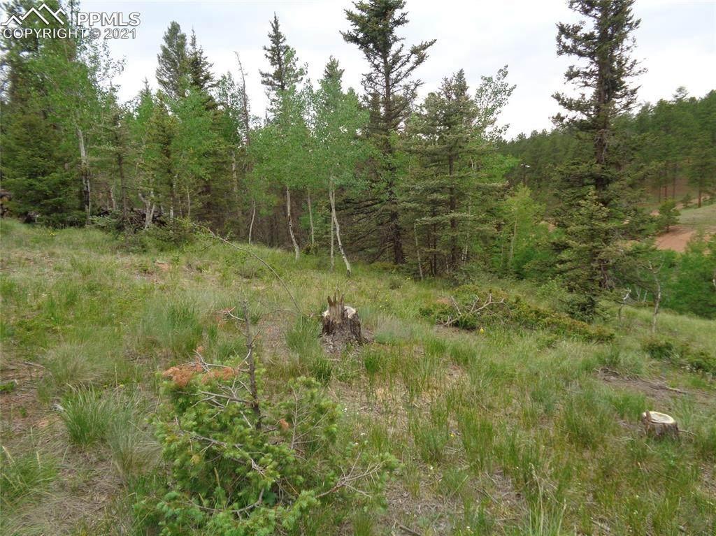 87 Chalk Creek Trail - Photo 1