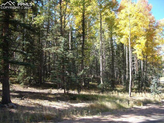 401 Silvermoon Heights, Divide, CO 80814 (#6511046) :: 8z Real Estate