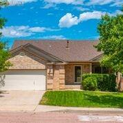 1338 Nutwood Drive, Colorado Springs, CO 80906 (#6552040) :: Tommy Daly Home Team