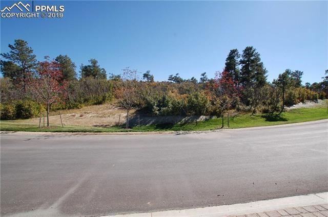 1725 Vine Cliff Heights, Colorado Springs, CO 80921 (#6568955) :: The Hunstiger Team