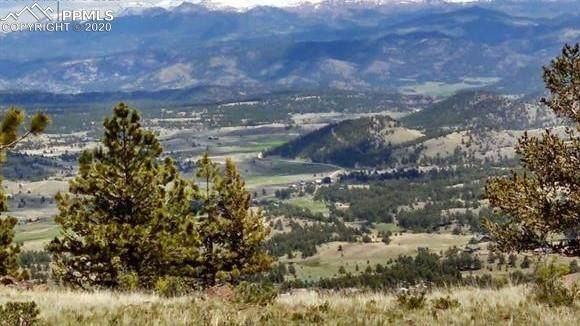 11200 Witcher Mountain Trail, Guffey, CO 80820 (#6643219) :: CC Signature Group