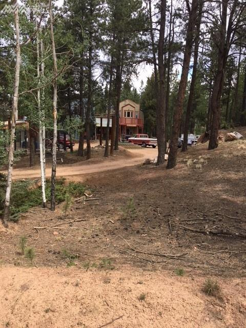 773 Arapahoe Creek Trail, Florissant, CO 80816 (#6673162) :: The Treasure Davis Team
