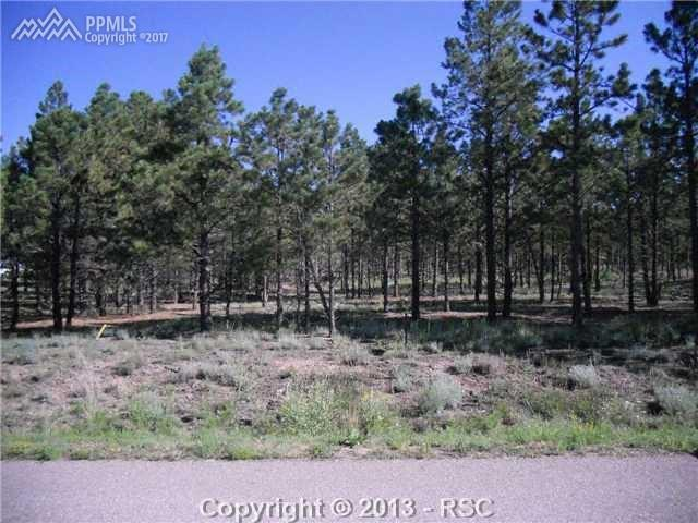 9044 Shipman Lane, Colorado Springs, CO 80908 (#6760001) :: 8z Real Estate