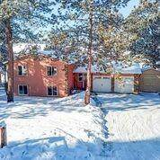 18170 Woodhaven Drive, Colorado Springs, CO 80908 (#6834366) :: Tommy Daly Home Team