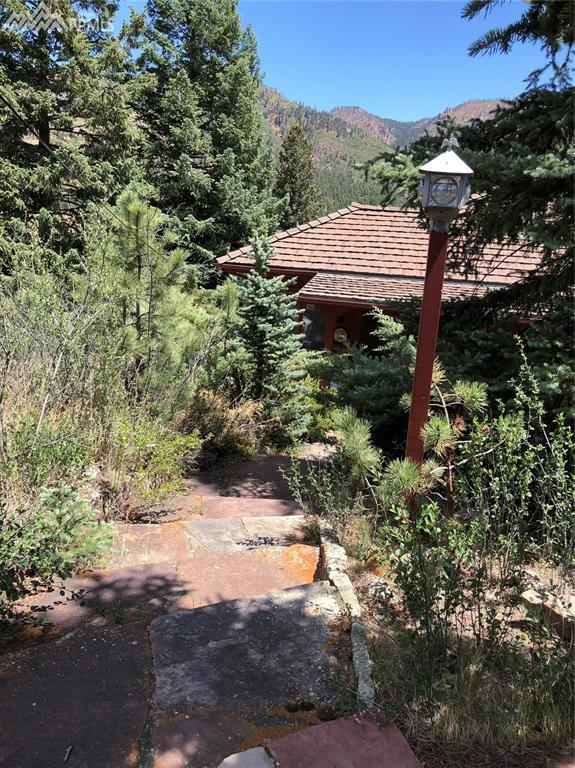 5620 Timpa Road, Cascade, CO 80809 (#6853785) :: The Dunfee Group - Keller Williams Partners Realty
