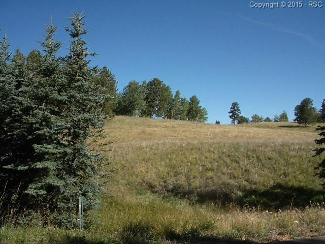 305 Pinaceae Heights, Divide, CO 80814 (#6856658) :: 8z Real Estate