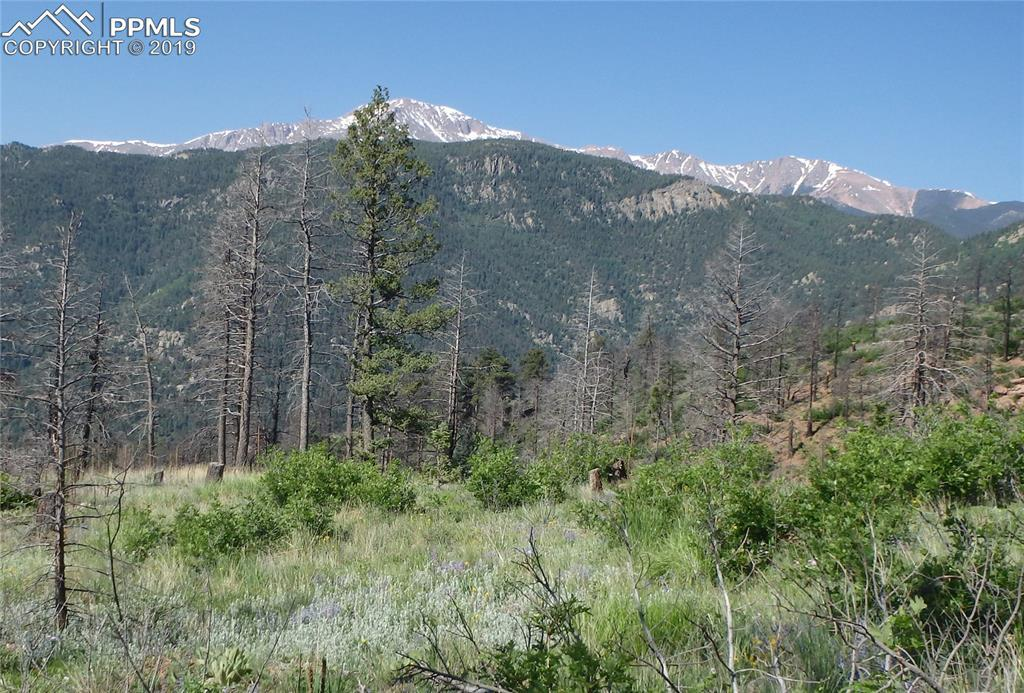 4165 Pyramid Mountain Road - Photo 1