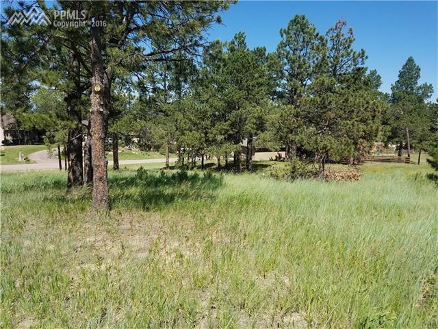 17565 Pond View Place, Colorado Springs, CO 80908 (#7082522) :: 8z Real Estate