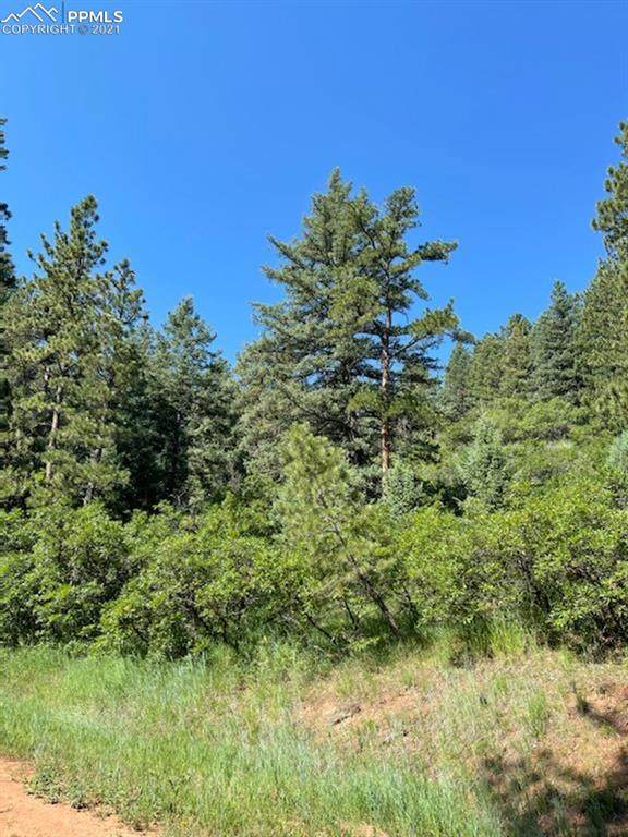 Unknown, Larkspur, CO 80118 (#7116422) :: The Treasure Davis Team | eXp Realty