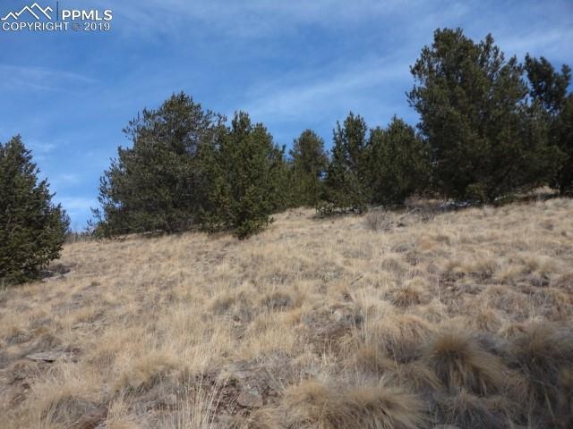 TBD6 Rhyolite Mountain Mesa Road, Cripple Creek, CO 80813 (#7173767) :: Jason Daniels & Associates at RE/MAX Millennium