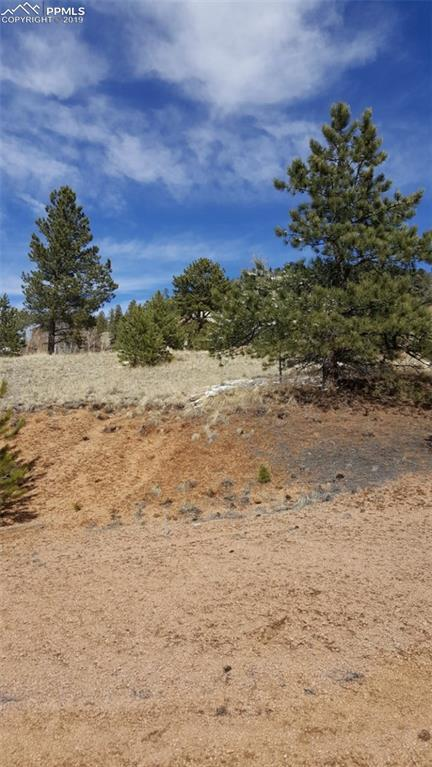 63 S Pinon Circle, Florissant, CO 80816 (#7297069) :: Tommy Daly Home Team