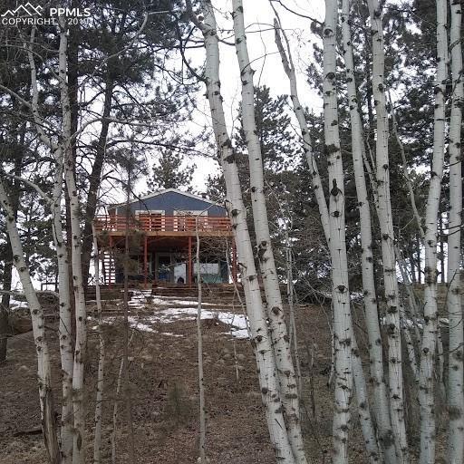 45 Columbine Road, Florissant, CO 80816 (#7325340) :: 8z Real Estate