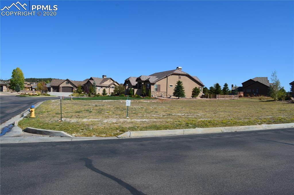 13453 Drytown Grove - Photo 1