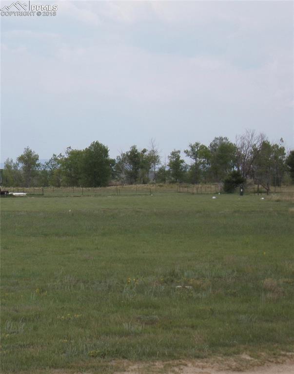5740 Coyote Lane, Peyton, CO 80831 (#7458830) :: Venterra Real Estate LLC