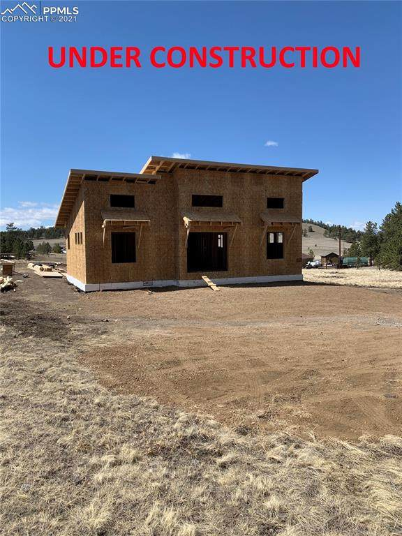 615 Due South Road, Florissant, CO 80816 (#7500347) :: Tommy Daly Home Team