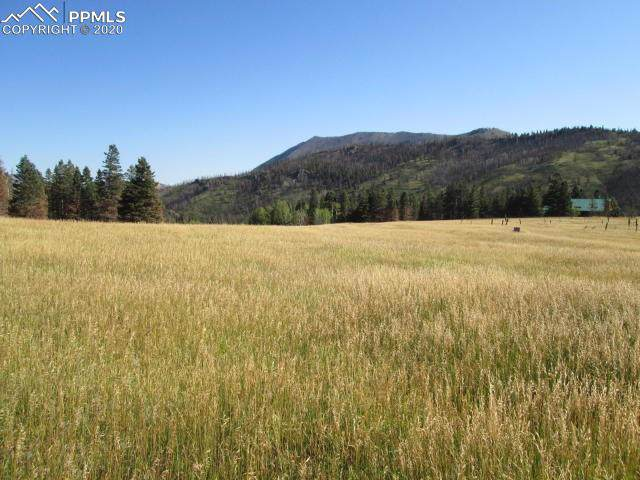 LOT 4 Paradise Acres, La Veta, CO 81055 (#7606525) :: The Daniels Team